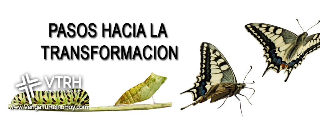 Pasos a Transformacion